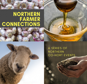 Join the Northern Co-Hort for a series of networking events throughout the Peace