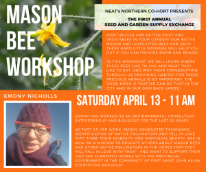 Emony Nicholls - Mason Bee Workshop