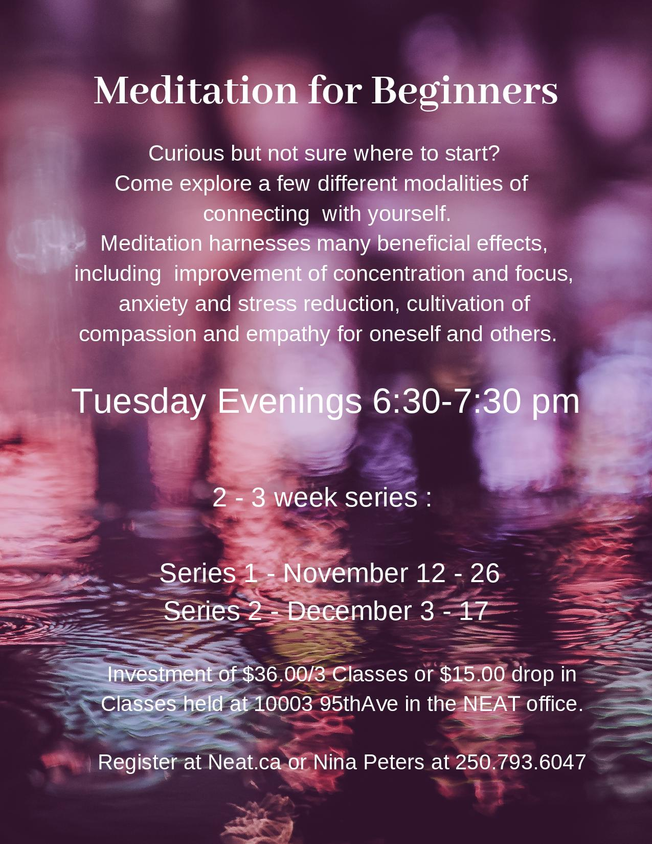 Nina Peters Presents - Meditation for Beginners